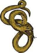 Viper Coiled Ready To Pounce Drawing Stock Illustration