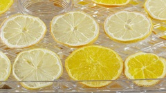 Lemon and orange slices drying in a food dehydrator Stock Footage