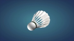 Badminton shuttlecock, sport equipment. Stock Footage
