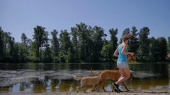 Girl in shorts running near water with two dogs Stock Footage