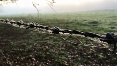 Barbed wire with cobwebs and mist fog in Norfolk countryside - United Kingdom Stock Footage