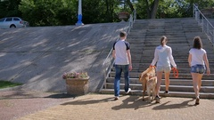 Three young people up stairs with two dogs Stock Footage