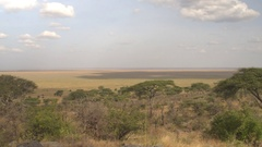 CLOSE UP: View from the top of the hill on African savannah grassland lowlands Stock Footage