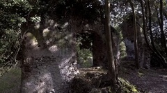 Etruscan ruin abandoned in the forest zoom out Stock Footage