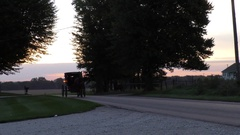 Amish buggy traveling down country road, early morning Stock Footage