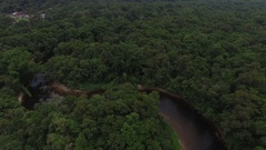 Aerial View of Amazon Rainforest, Brazil Stock Footage