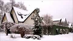Winter scene,  luxurious house and street with snow falling and birds flying Stock Footage