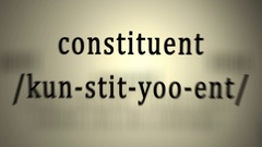 Definition: Constituent Stock Footage