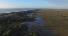 Aerial of Coastal Marsh and Forest on Folly Beach Stock Footage