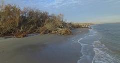 Aerial of Dead Trees on Folly Beach Stock Footage