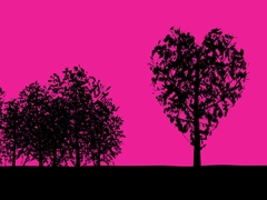 Heart shaped tree sways gently in the breeze against solid pink background. Stock Footage