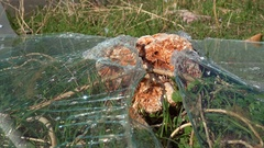 Glass smashed to pieces against a stone Stock Footage