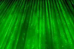 Green abstract background. Curtain with glowing lights. Christmas abstraction Stock Photos