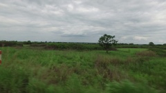Angola Savana drive shot 4K Stock Footage