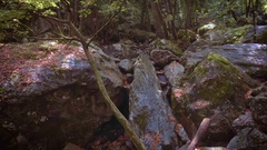Rocks pile canyon mossy forest hilly mountain wilderness brook channel Stock Footage