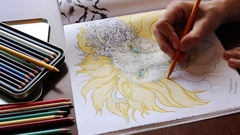 Adult colouring in book Stock Footage