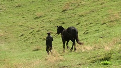 Man leading a horse in the mountains Stock Footage