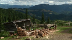 Woodpile in the mountains Stock Footage