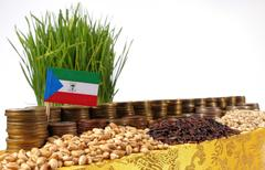 Equatorial Guinea flag waving with stack of money coins and piles of wheat .. Stock Photos