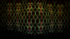 Snake skin video background Stock Footage