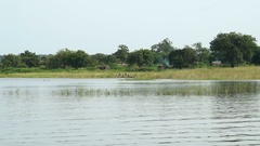 African coast of a lake. The video recording was made by boat. Stock Footage