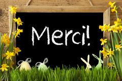 Narcissus, Easter Egg, Bunny, Merci Means Thank You Stock Photos