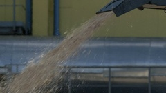 Pouring wood chips closeup on the ground. Stock Footage