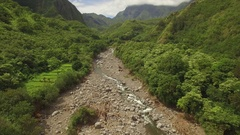 Top View Jungle River. Iao Valley Wailuku River - Aerial Stock Footage