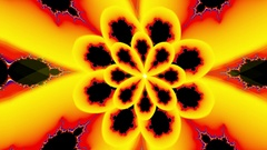 Psychedelic flowing fractal flower waving Arkistovideo