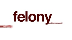 Felony animated word cloud. Stock Footage