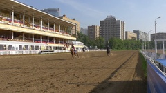 MOSCOW - CIRCA JUN 2016 running Horses Slow Motion, central Moscow hippodrome Stock Footage