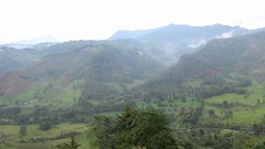 View of the Cocora Valley Stock Footage