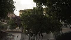 Italian orange tree in a garden in slow motion Stock Footage