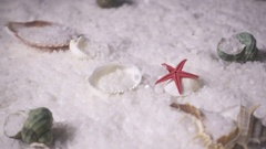 Slow mo white sea salt and shells Stock Footage