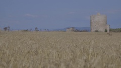 Storage in the wheat field Stock Footage