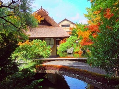 Kyoto ancient architecture to admire Maple Leaf Stock Footage