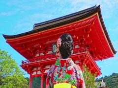 Women wear kimono Standing in Kiyomizu Temple, Kyoto, Japan Stock Footage
