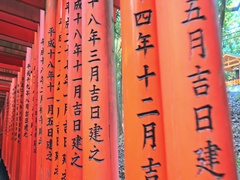 Torii gates in Fushimi Inari Shrine, Japan Stock Footage