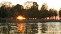 A beautiful sunset at Lake Stock Footage
