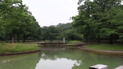 Fountain at Yoyogi park in Tokyo Stock Footage