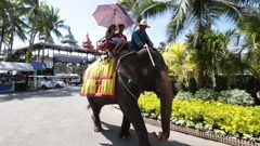 Pattaya, Thailand on November 24 Tourists ride on an elephant Stock Footage
