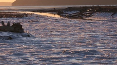 Frozen Inlet on Puget Sound Stock Footage