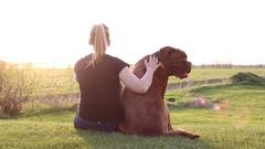 Woman pets her big mastiff dog sitting grass Stock Footage