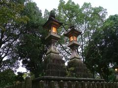 Stone lanterns in Kasuga-taisha shrine, Nara, Japan Stock Footage