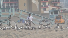 A young man barefoot running through a flock of seagulls on the beach, slow moti Stock Footage
