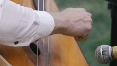 A man playing the contrabass Stock Footage