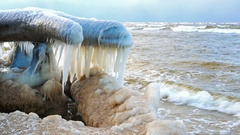 4K. Broken tree on the seaside with a number of icicles. Stock Footage