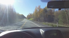 Driving through forest with fall colours 4k Stock Footage