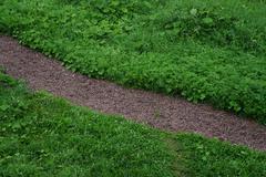 Green grass with gravel diagonal path Stock Photos