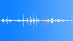 Footsteps on Wet Crunchy Debris loop Sound Effect